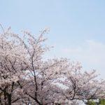 【家族や友達同士で楽しめる!】葛西臨海公園!!