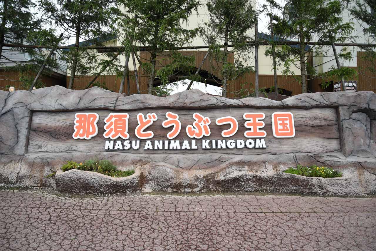 【雨でも遊べる!】那須どうぶつ王国~ふれあい充実、ネコのショーも!~